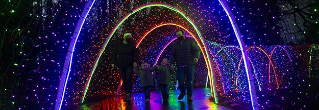 Zoolights tunnel